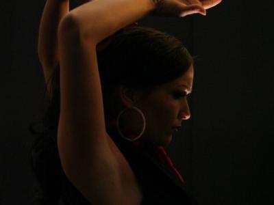 Flamenco Gala mit Rafael de Alcála