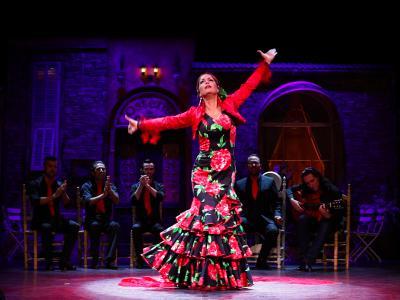 Flamenco unter Sternen