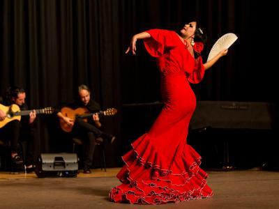 Gala sangre flamenca